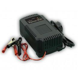 Зарядное устройство Кулон-100